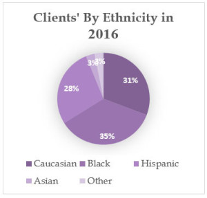 2016 About ethnicity Chart